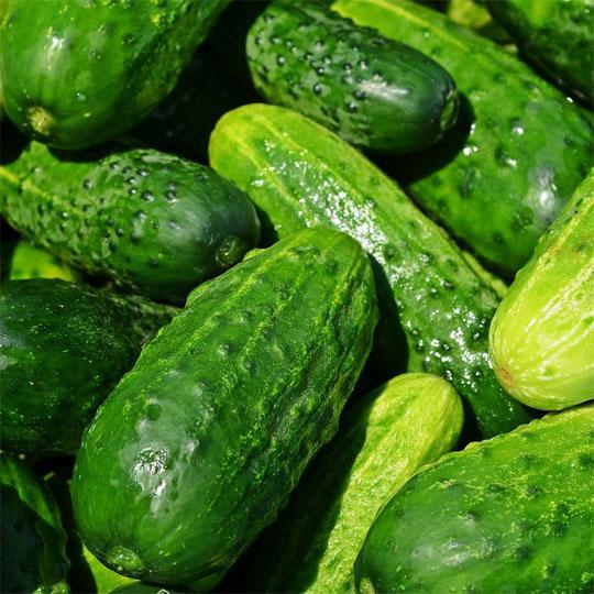 0402蔬菜